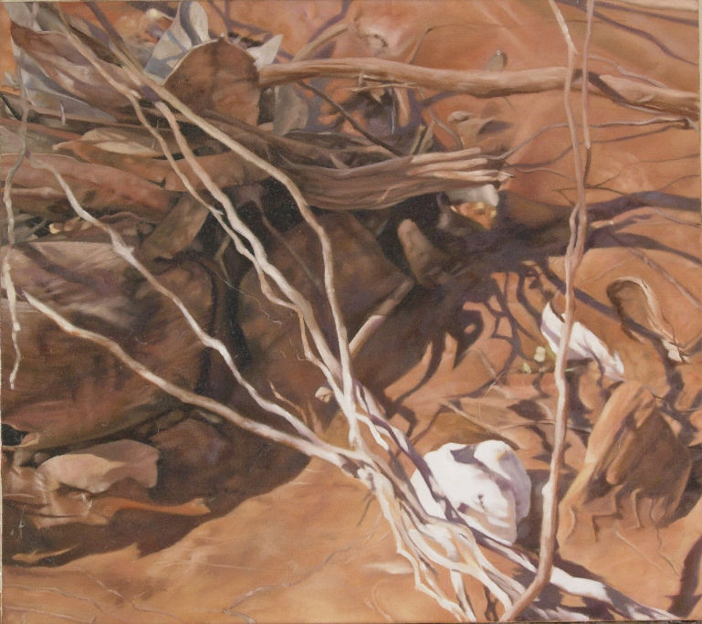 Fowlers Gap 1, a painting by Australian artist Katherine Edney